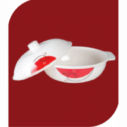 Double Glass LPG Gas Stove Bluebell